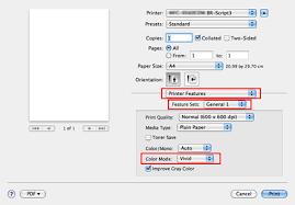 Print Dialog Of BR Script Driver