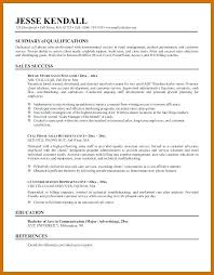 Customer Service Resume Summary Statement Examples Career Example For Sta