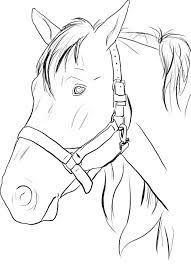 Coloring Pages Horse Head Print Printable For Adults Pictures Race Free