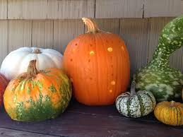 Halloween Pumpkin Coloring Ideas by Pumpkins U0026 Power Drills 10 Creative Jack O U0027 Lantern Ideas