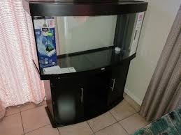 juwel aquarium vision 260 juwel vision 260 aquarium brackenfell gumtree classifieds