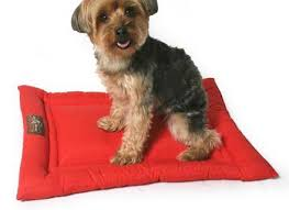 jax and bones dog beds making something like this right nowmore