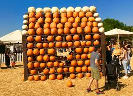 Calabasas Pumpkin Festival 2014 by Thousand Oaks Gears Up For Fall The Echo