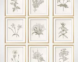 Set Of 9 Botanical Prints Modern Farmhouse Wall Art Rustic Living Room