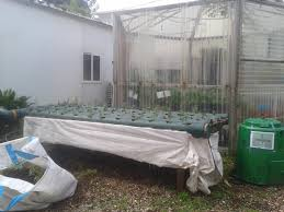File:Hydroponic System, In School Garden, Botanical Garden ... Hydroponic Home Garden Backyard Food Solutionsbackyard Oc Aquaponics Project Admin What Is Learn About Aquaponic Plant Growing Photos Friendly Picture With Amusing Systems Grow 10x The Today Bobsc Ezgro Amazoncom Vertical Gardening Vegetable Tower Indoor Outdoor From Fish To Ftilizer Greenhouse Im In My City Back Yard Yes I Am Satuskaco