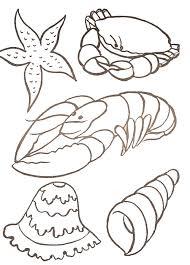 Zig Et Sharko Coloriage Ermite De Crabe