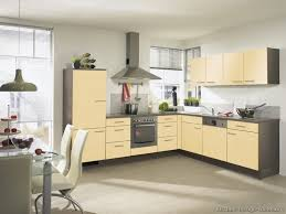 100 European Kitchen Design Ideas Cabinets