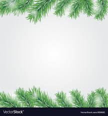 Frame With Christmas Tree Branch Vector Image