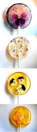 Cakes Decorated With Candy by 25 Best Edible Flowers For Cakes Ideas On Pinterest Edible