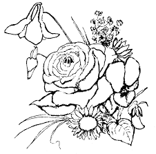 Printable Flower Coloring Book Rose Pictures In The Yard