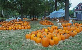 Pumpkin Patches Near St Peters Mo by Webster Hills Umc