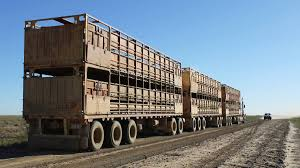 Small Trucking Viability Under Threat | Queensland Country Life Sughton Jumping Into Refrigerated Trailer Market Truck News Trucker Roads Of America Indiego Inrstate 5 South Tejon Pass Pt 19 Triple D Finest Car Club Home Facebook Double Barrel Trucking Llc Straight Owner Operators Need With Panther Premium Alabama Association 2017 Membership Directory Shippers Carolina Minnesota Commercial And Passenger Regulations 2018 Transport Issue 107 Febmar 2016 By Publishing Weernstar Twitter Search From Driver To Truss Designer Irregular Ideation