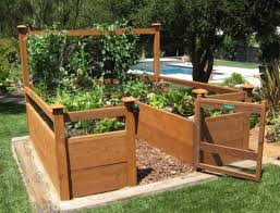 plant stunning ideas home depot raised garden beds greenes fence