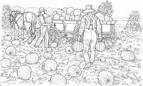 Farm Life Harvesting Pumpkin At Coloring Pages