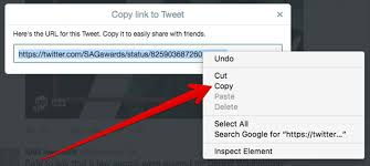 How to Download Twitter Videos on iPhone iPad Mac and Windows PC