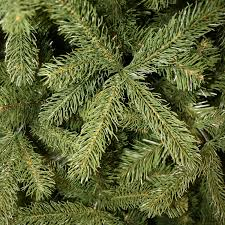 7ft Slim Christmas Tree by National Tree 7ft Bayberry Spruce Slim Feel Real Pre Lit