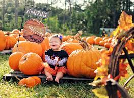 Pumpkin Patch Fort Collins by 38 Best Pumpkin Patch Images On Pinterest Pumpkin Patches Fall