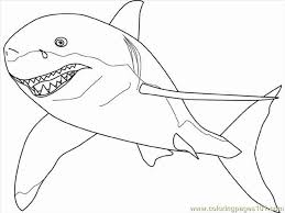Pages Great White Shark Fish Free Printable Coloring Page