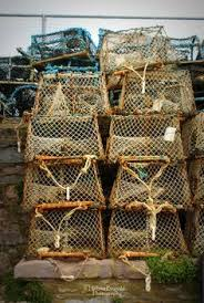 Decorative Lobster Trap Uk by Medium Decorative Crab Trap Crab Trap Lobster Trap And Living