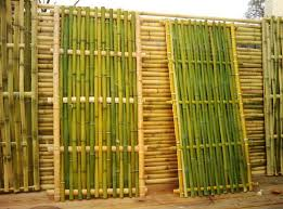 100 Bamboo Walls Ideas Building Fences Home Decor Photos Gallery