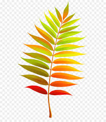 Leaf Clip art Colorful Transparent Fall Leaf Clipart