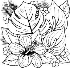 Tropical Plants And Hibiscus Flowers Coloring Book Page Royalty Free Stock Vector Art