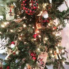 Christmas Tree Seedlings by Keris Tree Farm U0026 Christmas Shop Home Facebook