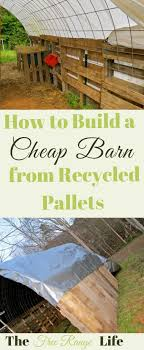 Best 25+ Chicken Shelter Ideas On Pinterest | Chicken Bath Dust ... Chicken Coops For Sale Runs Houses Kits Petco Coops 6 Chickens Compare Prices At Nextag Building A Coop Inside Barn With Large Best 25 Shelter Ideas On Pinterest Bath Dust Little Red Backyard Chickens Barn Images 10 Backyard From Condos Compelete Prevue 465 Rural King Designs Horizon Structures