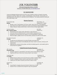 Example It Resume Artist Template Awesome Puter Skills Examples Exam Full Size