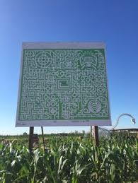 Silveyville Pumpkin Patch Dixon Ca by Take On The World U0027s Largest Corn Maze At Cool Patch Pumpkins In