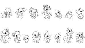 Baby Animal Colori Gallery For Photographers Cute Coloring Pages