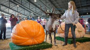 Largest Pumpkin Ever by Why Vegetables Get Freakish In The Land Of The Midnight Sun The