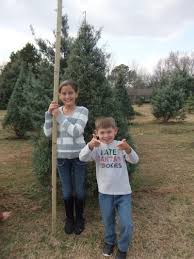 Leyland Cypress Christmas Tree Farm by Thank You Messages To Veteran Tickets Foundation Donors