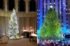Who Has The Biggest Christmas Tree Britney Spears Or Rockefeller Center