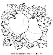 Clipart Black And White Apple And Pear A Bed Grapes And Leaves Royalty Free Vector Illustration by Vector Tradition SM