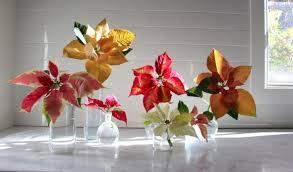 Menards Artificial Slim Christmas Tree by Poinsettia Rethinking A Traditional Christmas Flower Gardenista