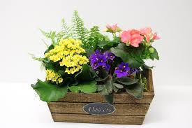100 Blooming House Flower Crate In Lawrenceburg IN Artistic Floral
