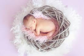 Quotes About Unborn Child 66 Quotes