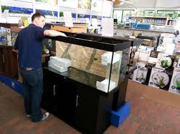 the weald aquatics weald s new cichlid display aquarium
