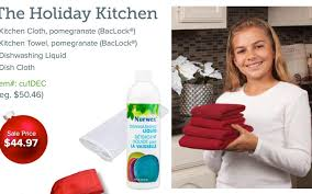 Get a clean kitchen fast Enjoy the holidays more Norwex Products