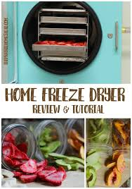 Harvest Right Home Freeze Dryer Review • The Prairie Homestead