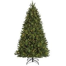 NOMA Pre Lit Brentwood Pine Christmas Tree 65 Ft