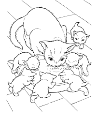 Nice Cats Free Coloring Pages