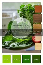 farbkonzepte wände in salatgrün