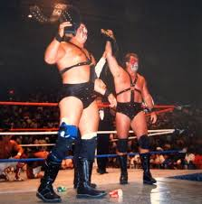Wwe Curtain Call 1996 by List Of World Tag Team Champions Wwe Wikipedia