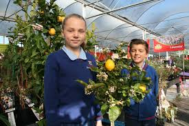Fruit Trees For Howick Schools   OurAuckland Archie Eats Kings Plant Barn Archies Journal By Michael Ngariki Garden Design Cafe Henderson Aucklandnzcom Daniels Wood Land On The Set For Redwood Kippen Home Facebook Youtube Monthly Gardening Checklist December