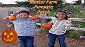 Visalia Mooney Pumpkin Patch by Vossler Farms Pumpkin Patch Mooney Blvd Visalia Ca