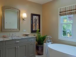 Plants For Bathroom Counter by Bathroom Modern Bathroom Design With Roman Shade Window And Virtu