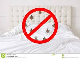 stoppschild mit insekten gegen betthintergrund es sollte