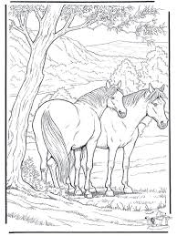Beautiful Horse Coloring Pages